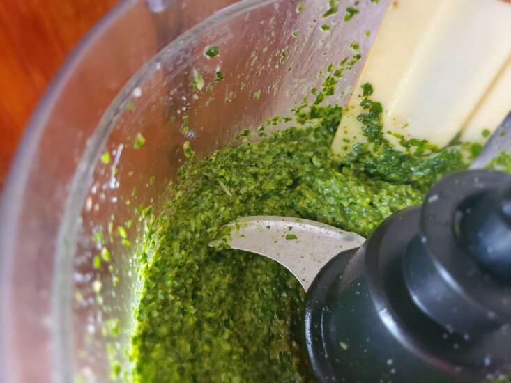 How to make your own pesto with fresh garden herbs